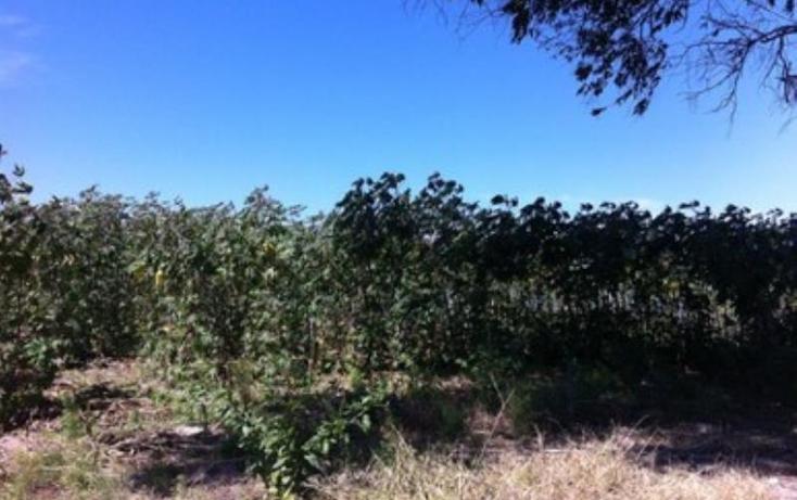 Foto de terreno industrial en venta en carretera san isidro mazatepec 0, san juan de los arcos, tala, jalisco, 1902658 No. 03