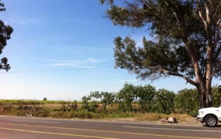 Foto de terreno industrial en venta en carretera san isidro mazatepec 0, san juan de los arcos, tala, jalisco, 1902658 No. 04