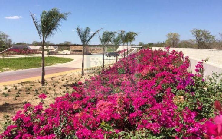 Foto de terreno habitacional en venta en carretera sitpach, cholul, mérida, yucatán, 1754666 no 08