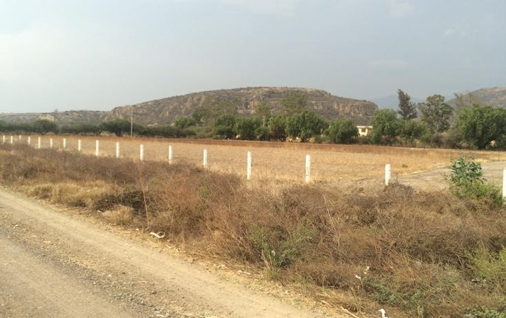 Foto de terreno habitacional en venta en  , tlacolula de matamoros centro, tlacolula de matamoros, oaxaca, 860881 No. 04
