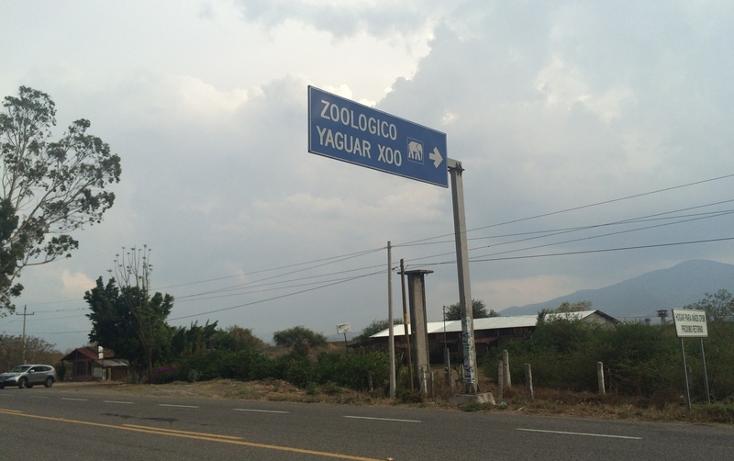 Foto de terreno habitacional en venta en carretera tanivet-tlacolula , tlacolula de matamoros centro, tlacolula de matamoros, oaxaca, 860881 No. 05