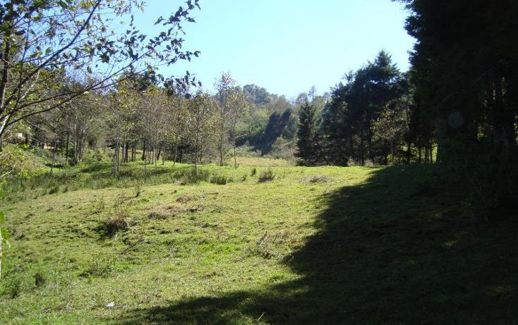 Foto de terreno comercial en venta en carretera tenejapa - san cristóbal kilometro 7.5 , la garita, san cristóbal de las casas, chiapas, 1784146 No. 07