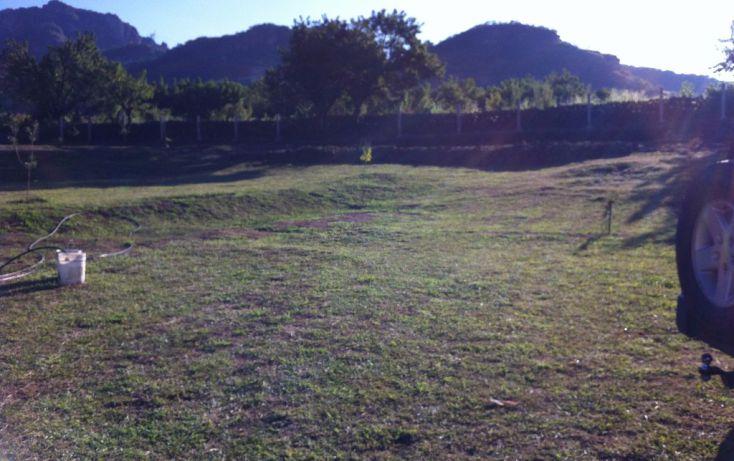 Foto de terreno habitacional en venta en carretera tepoztlan, los ocotes, tepoztlán, morelos, 1706000 no 02