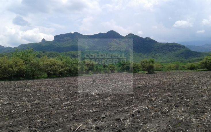 Foto de terreno habitacional en venta en carretera tepoztlan yautepec 1, tepoztlán centro, tepoztlán, morelos, 1028929 no 02