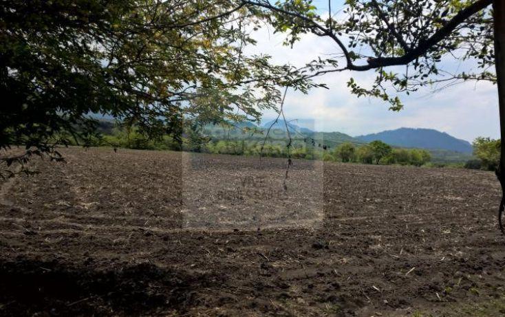 Foto de terreno habitacional en venta en carretera tepoztlan yautepec 1, tepoztlán centro, tepoztlán, morelos, 1028929 no 10