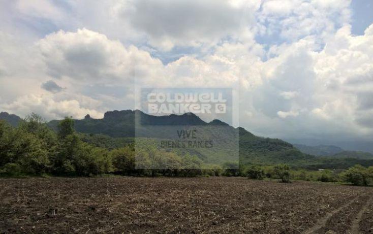 Foto de terreno habitacional en venta en carretera tepoztlan yautepec 1, tepoztlán centro, tepoztlán, morelos, 1028929 no 13