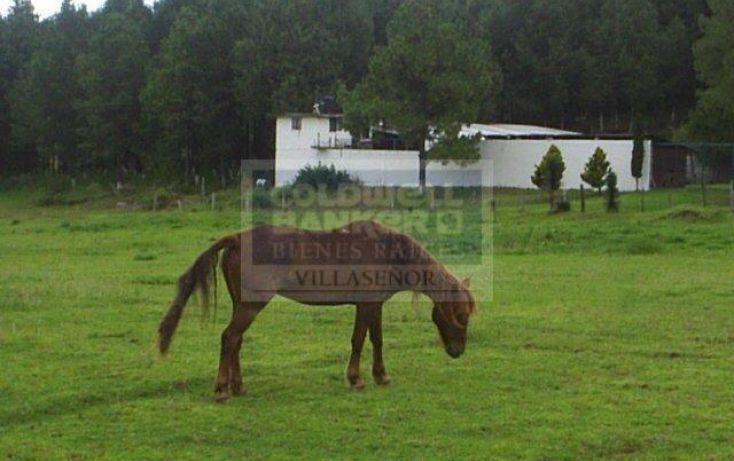 Foto de rancho en venta en carretera toluca zitcuaro, villa victoria, villa victoria, estado de méxico, 345798 no 05