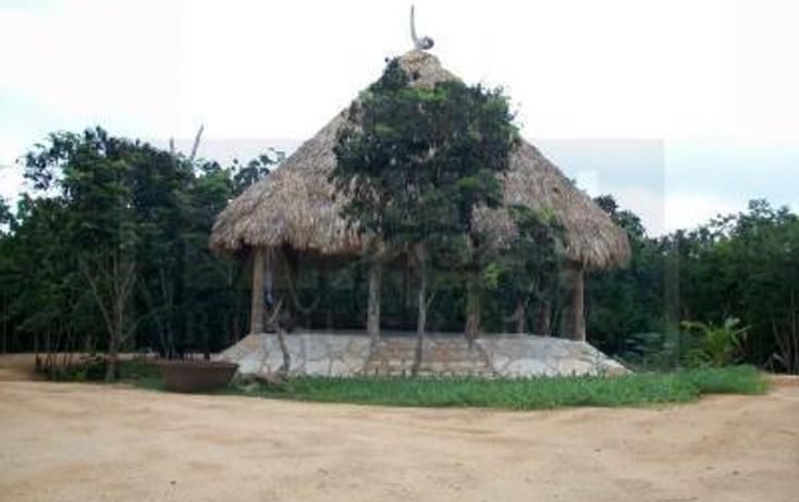 Foto de casa en venta en carretera tulum-coba , tulum centro, tulum, quintana roo, 1848256 No. 08