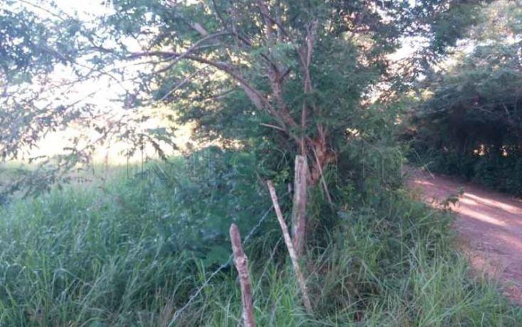 Foto de terreno habitacional en venta en carretera tupantamiahua, tamiahua, tamiahua, veracruz, 1427999 no 05