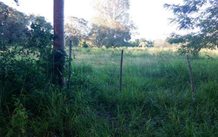 Foto de terreno habitacional en venta en carretera tupantamiahua, tamiahua, tamiahua, veracruz, 1427999 no 06