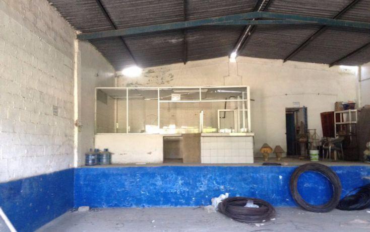 Foto de bodega en renta en carretera tuxpan tampico, túxpam de rodríguez cano centro, tuxpan, veracruz, 1801531 no 01
