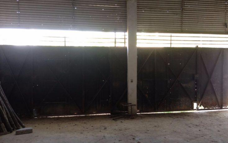 Foto de bodega en renta en carretera tuxpan tampico, túxpam de rodríguez cano centro, tuxpan, veracruz, 1801531 no 07