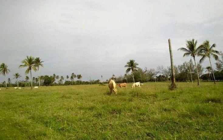 Foto de terreno industrial en venta en carretera veracruzminatitlan, 20 de noviembre, medellín, veracruz, 1585820 no 06