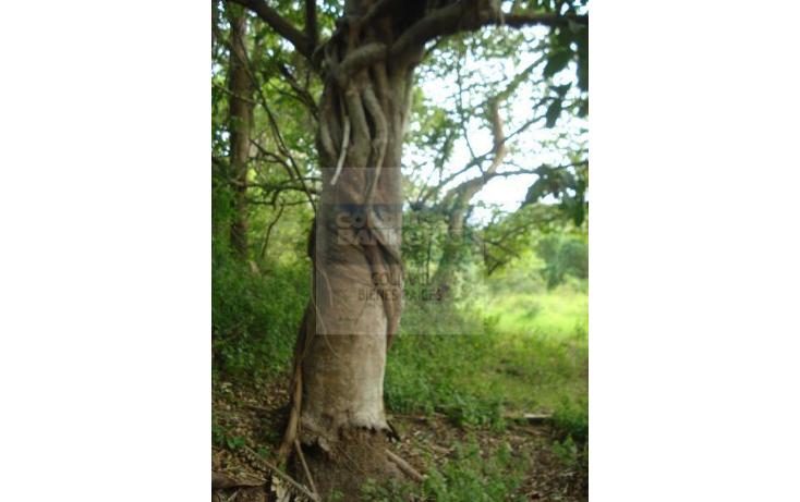 Foto de terreno comercial en venta en  , el naranjo, manzanillo, colima, 1852282 No. 09