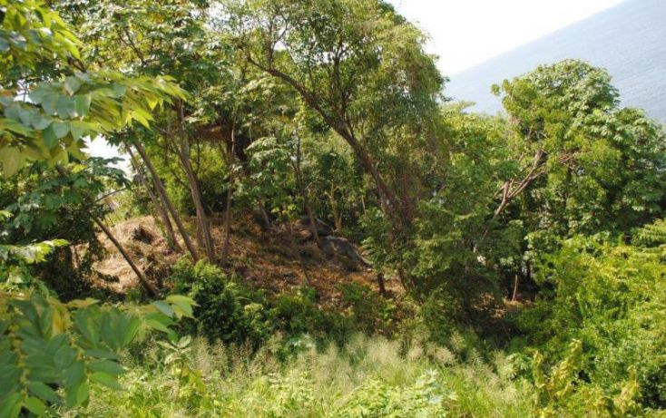 Foto de terreno habitacional en venta en carreterra a barra de navidad km, boca de tomatlán, puerto vallarta, jalisco, 1937372 no 04