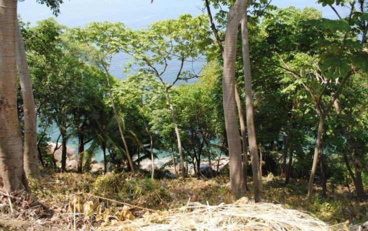 Foto de terreno habitacional en venta en carreterra a barra de navidad km, boca de tomatlán, puerto vallarta, jalisco, 1937372 no 05
