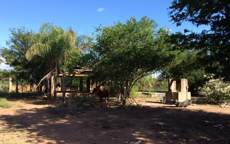 Foto de rancho en venta en carrtera interejidal 0, victoria, victoria, tamaulipas, 2651542 No. 10