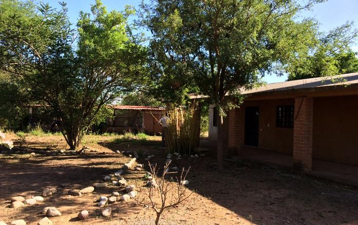Foto de rancho en venta en carrtera interejidal 0, victoria, victoria, tamaulipas, 2651542 No. 11