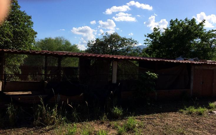 Foto de rancho en venta en carrtera interejidal 0, victoria, victoria, tamaulipas, 2651542 No. 23