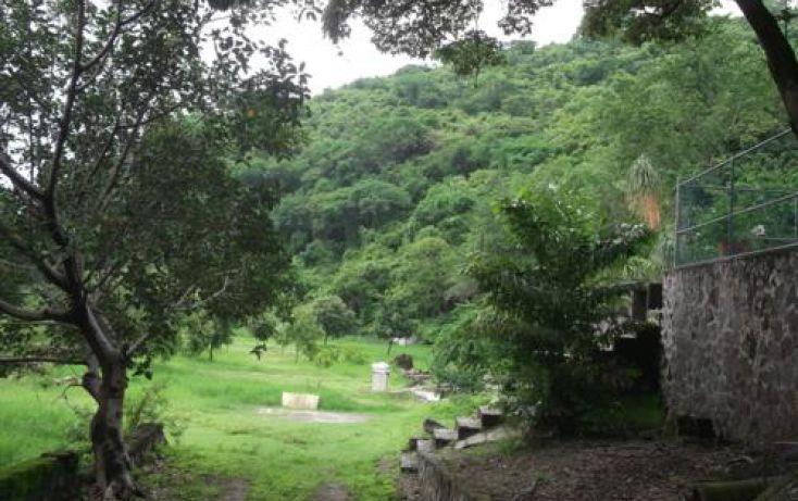 Foto de terreno habitacional en venta en, casa blanca, temixco, morelos, 1291139 no 01
