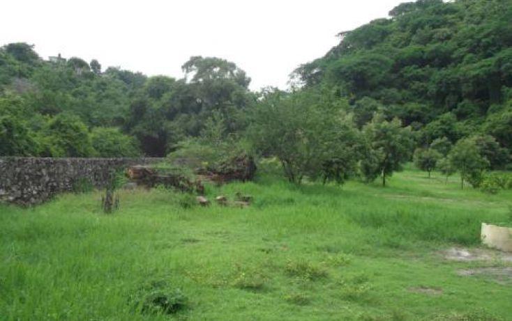 Foto de terreno habitacional en venta en, casa blanca, temixco, morelos, 1291139 no 03