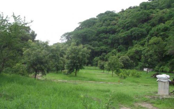 Foto de terreno habitacional en venta en, casa blanca, temixco, morelos, 1291139 no 06
