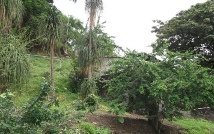Foto de terreno habitacional en venta en, casa blanca, temixco, morelos, 1291139 no 16