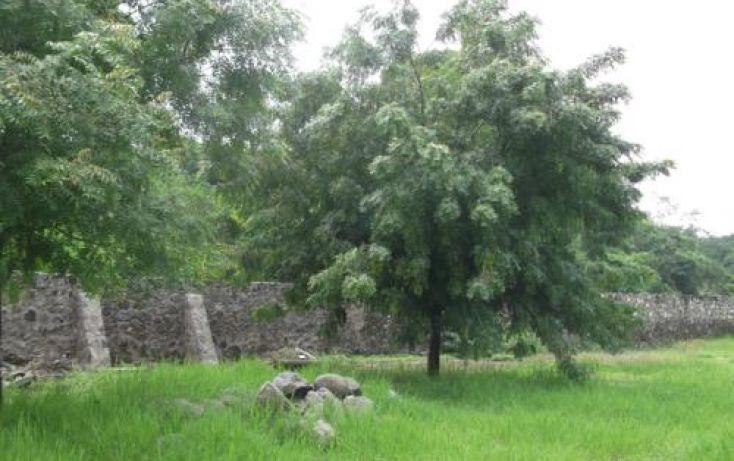 Foto de terreno habitacional en venta en, casa blanca, temixco, morelos, 1291139 no 18
