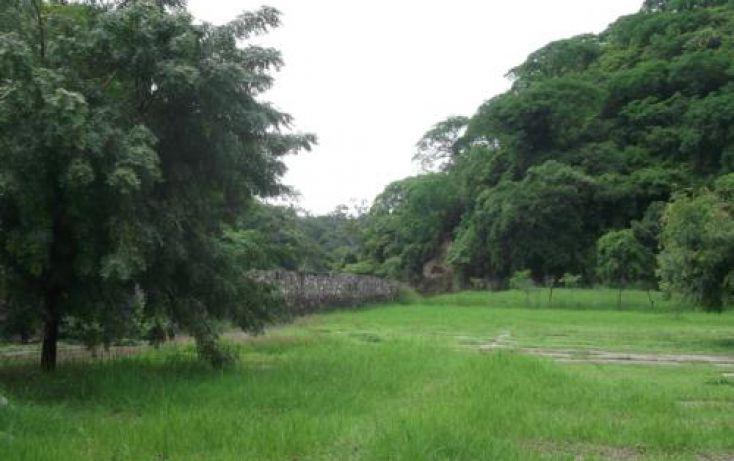 Foto de terreno habitacional en venta en, casa blanca, temixco, morelos, 1291139 no 19