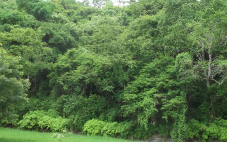 Foto de terreno habitacional en venta en, casa blanca, temixco, morelos, 1291139 no 20