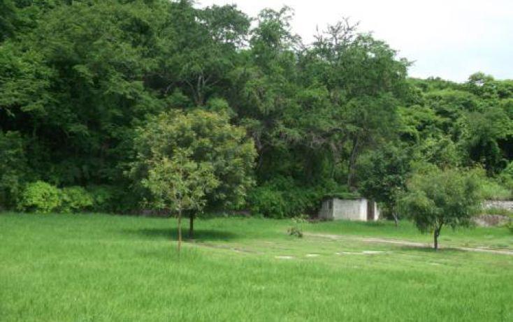 Foto de terreno habitacional en venta en, casa blanca, temixco, morelos, 1291139 no 35
