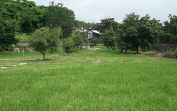 Foto de terreno habitacional en venta en, casa blanca, temixco, morelos, 1291139 no 36