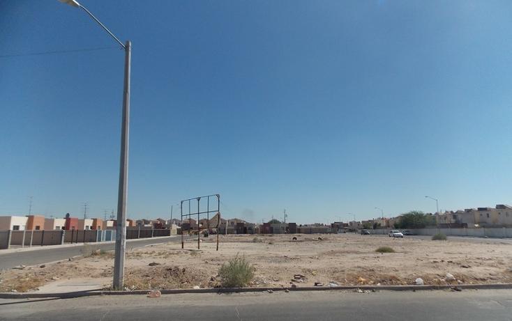 Foto de terreno comercial en venta en  , casa digna, mexicali, baja california, 1468689 No. 04