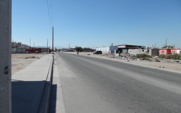 Foto de terreno comercial en venta en  , casa magna, mexicali, baja california, 1132575 No. 05
