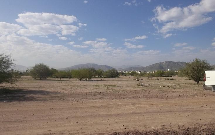 Foto de terreno habitacional en venta en  , castilagua, lerdo, durango, 982103 No. 03