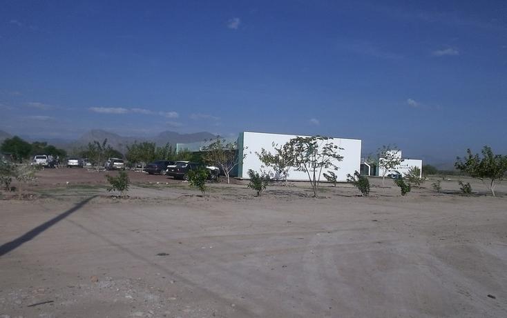 Foto de terreno habitacional en venta en  , castilagua, lerdo, durango, 982103 No. 04
