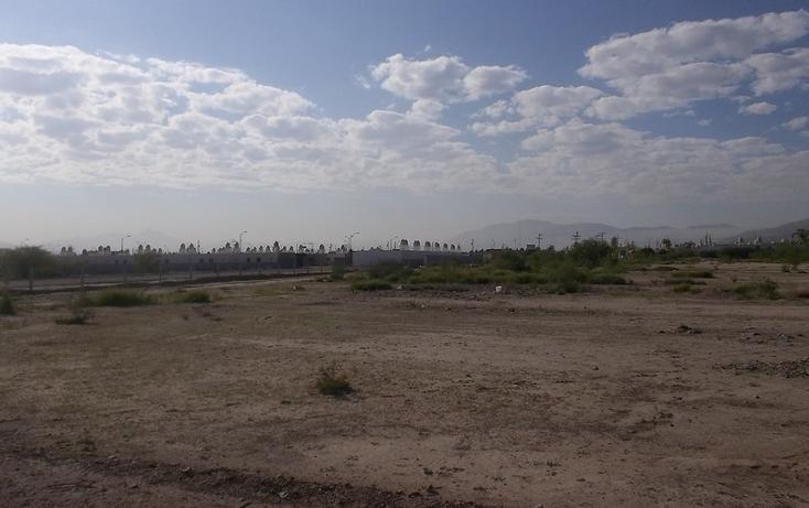 Foto de terreno habitacional en venta en  , castilagua, lerdo, durango, 982103 No. 06