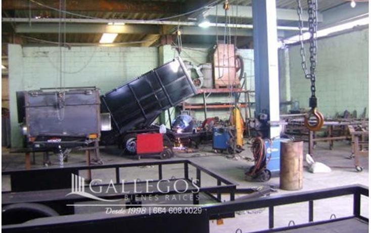 Foto de nave industrial en venta en  , la mesa, tijuana, baja california, 3414834 No. 05