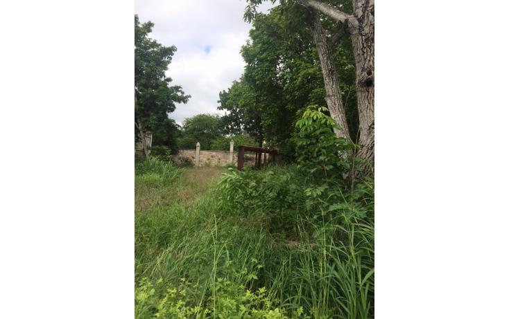 Foto de terreno habitacional en venta en  , caucel, mérida, yucatán, 1042359 No. 03