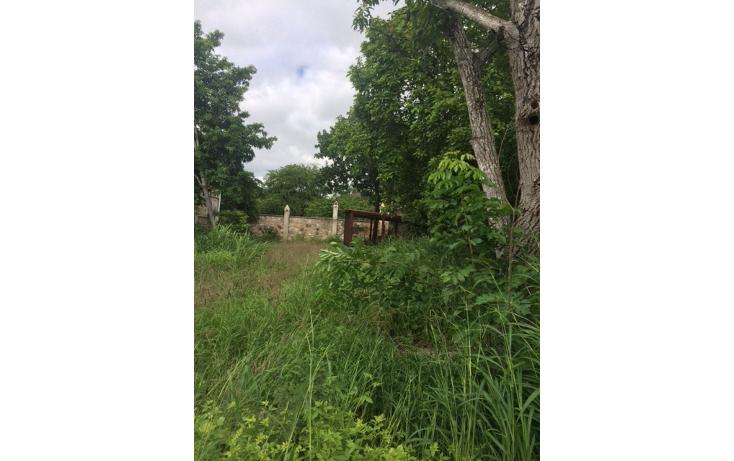 Foto de terreno habitacional en venta en  , caucel, mérida, yucatán, 1042359 No. 04