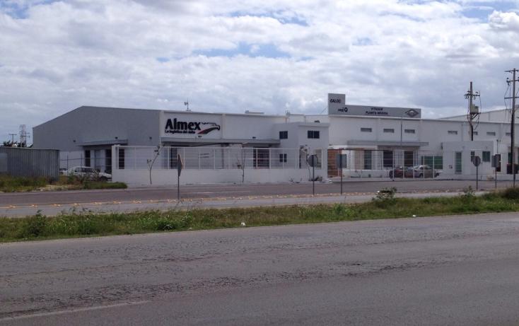 Foto de terreno comercial en renta en  , caucel, mérida, yucatán, 1161847 No. 01