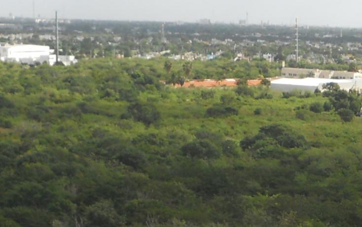 Foto de terreno comercial en venta en  , caucel, mérida, yucatán, 1494977 No. 01
