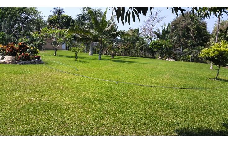 Foto de terreno habitacional en renta en  , cayaco, acapulco de juárez, guerrero, 1270035 No. 05