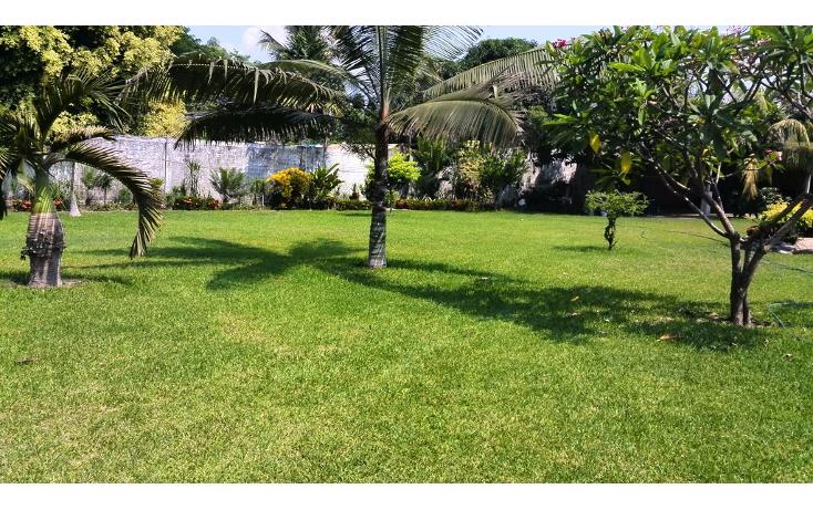 Foto de terreno habitacional en renta en  , cayaco, acapulco de juárez, guerrero, 1270035 No. 07