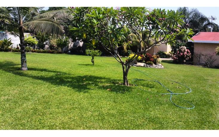 Foto de terreno habitacional en renta en  , cayaco, acapulco de juárez, guerrero, 1270035 No. 08