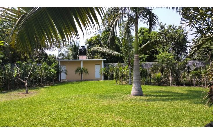 Foto de terreno habitacional en renta en  , cayaco, acapulco de juárez, guerrero, 1270035 No. 09