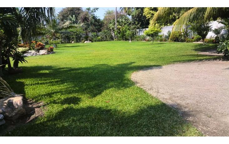 Foto de terreno habitacional en renta en  , cayaco, acapulco de juárez, guerrero, 1270035 No. 11