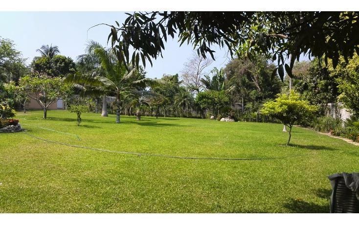Foto de terreno habitacional en renta en  , cayaco, acapulco de juárez, guerrero, 1270035 No. 12