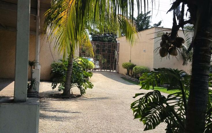 Foto de terreno habitacional en renta en  , cayaco, acapulco de juárez, guerrero, 1270035 No. 14
