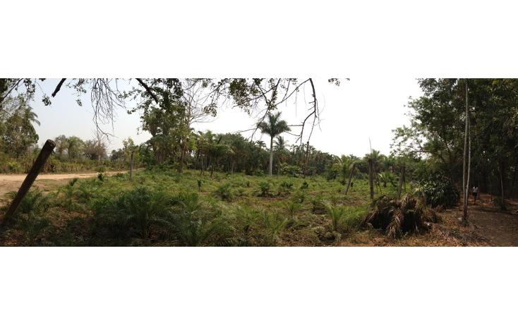 Foto de terreno habitacional en venta en  , cayaco, acapulco de juárez, guerrero, 1270901 No. 04